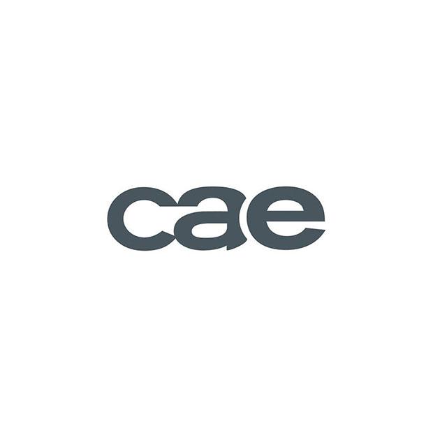 CAE.jpg